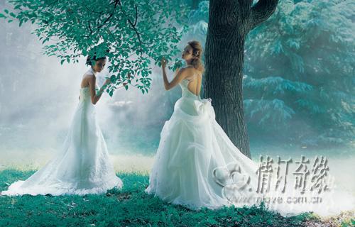 情订奇缘婚纱摄影加盟