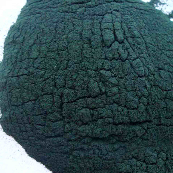 康派奇螺旋藻加盟