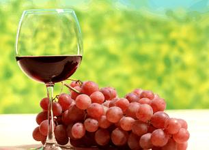 凤凰葡萄酒加盟