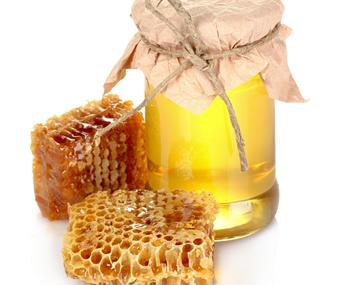 王氏天兴蜂产品加盟