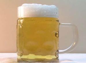 七匹狼啤酒加盟