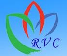 RVC特長培訓加盟
