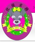 优缇多格宠物美容培训中心加盟