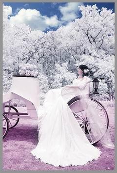 维纳斯婚纱摄影加盟