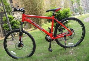 自由骑士正反驱动健身自行车加盟